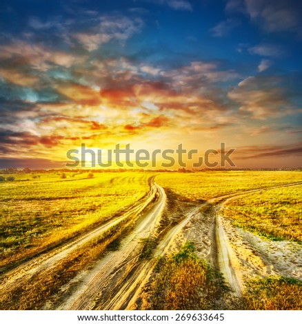 Two divergent sandy road in a field under a dramatic sky - stock photo