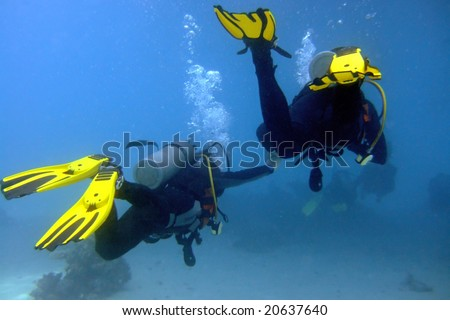 Two divers swim hand by hand in the Red Sea, Egypt - stock photo