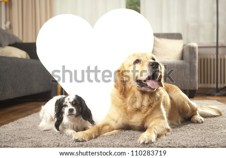 Two dogs with white heart for copy space - stock photo