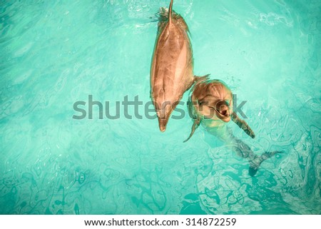 Two dolphins playng and rubbing against each other - stock photo