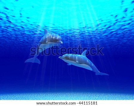 Two dolphins swimming in the ocean - stock photo