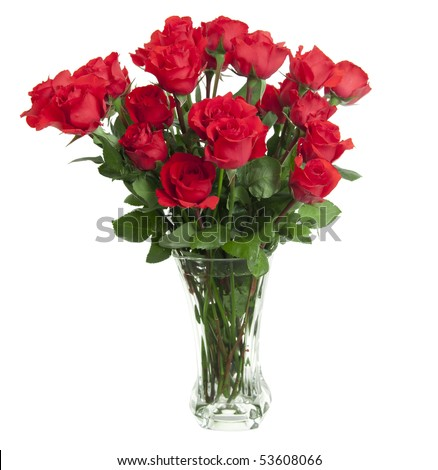 Dozen Green Roses Two dozen red roses isolated