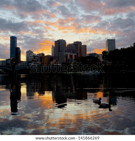 Two ducks on the Yarra in Melbourne - stock photo
