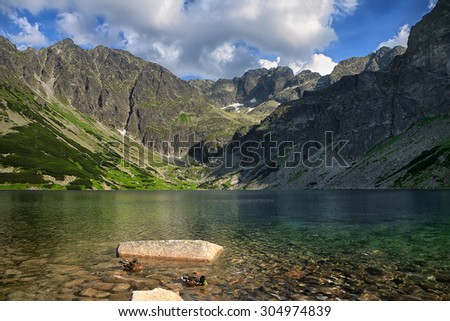 Two ducks swimming in crystal clear lake surrounded by mountain chain
