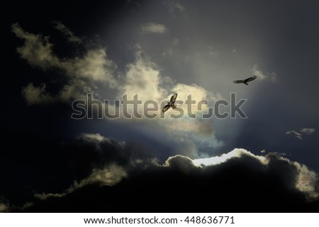 Two eagles flying against a enhanced dramatic dark sky - stock photo