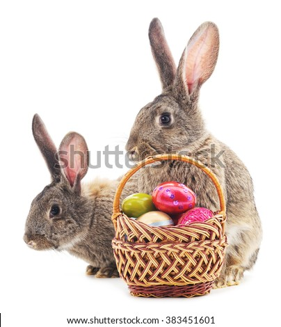 Two Easter bunnies with colored eggs in the basket isolated on a white background. - stock photo
