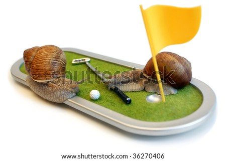 Two edible snails on the golf course isolated on the white background