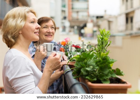 Two elderly housewives drinking tea at terrace with decorative plants - stock photo