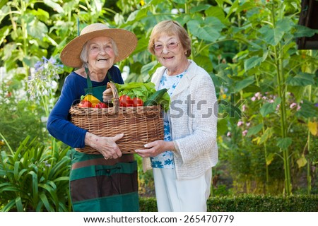 Two Elderly Women Holding a Basket Full of Healthy Fresh Vegetables at the Farm While Smiling at the Camera. - stock photo