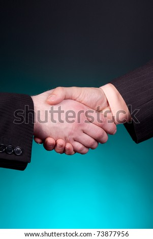 two elegant businessman shaking hands - stock photo