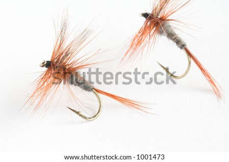 Two fake flies used for trout fishing