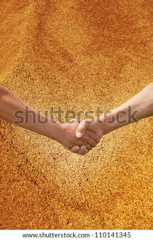 Two farmer's hands handshake against the background of the harvest of wheat. - stock photo