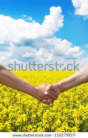 Two farmer's hands handshake at the harvest rape field. - stock photo