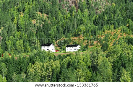 Two farmhouses on a hillside in forrest - stock photo
