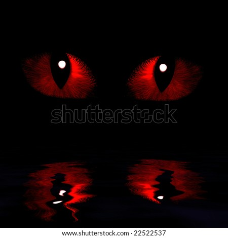 Two feline eyes reflected in water on a dark background
