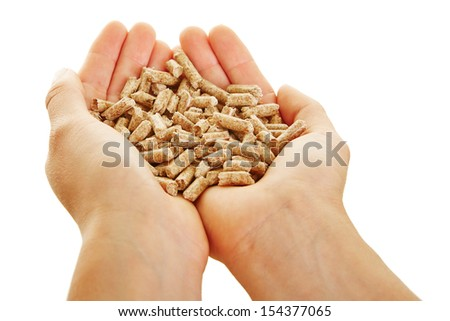 Two female hands holding many small wood pellets