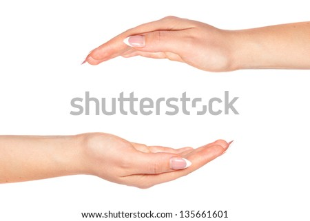 Two female hands on a white background