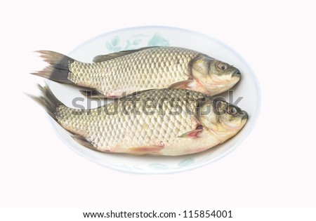 two Fish in the dish with white background