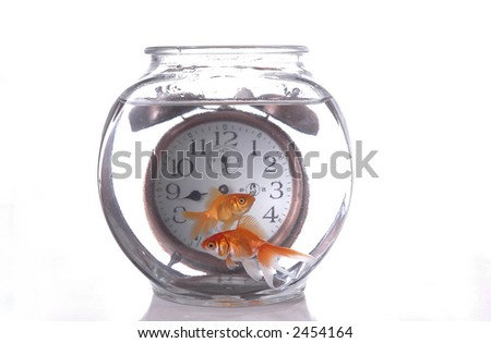 Two fish swim in a bowl in front of an alarm clock that appears to be submerged.