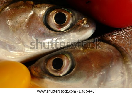 two fishes with red and yellow pepper