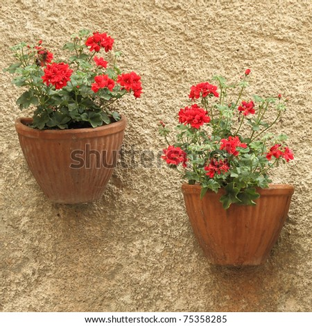 two flowerpots with red geranium on wall - stock photo
