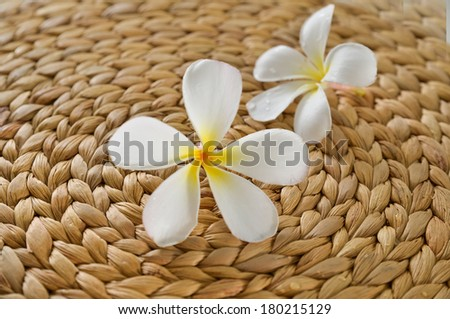 Two frangipani and Wicker placemat texture - stock photo