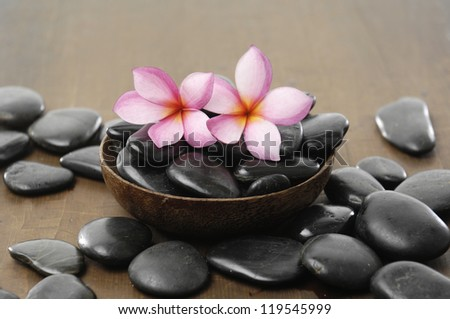 Two frangipani flower in wooden bowl on wooden board