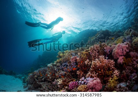 Two freedivers swimming underwater over vivid coral reef. Red Sea, Egypt - stock photo