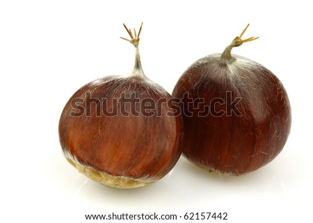 two fresh chestnuts on a white background - stock photo