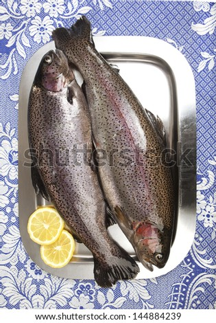 Two fresh rainbow trouts on a stainless steel tray, garnished with two slices of lemon, raw fish ready for the kitchen - stock photo