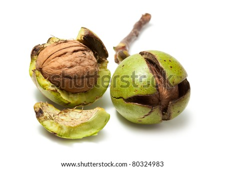 Two fresh raw walnuts isolated on white