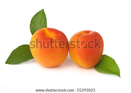 Two fresh, ripe apricots on white background - stock photo