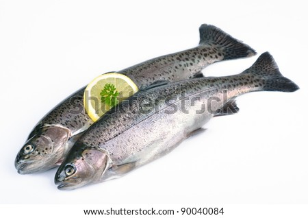 Two fresh trout - stock photo