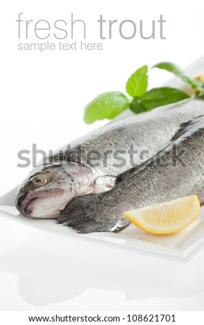 Two fresh trout fish isolated on white background - stock photo