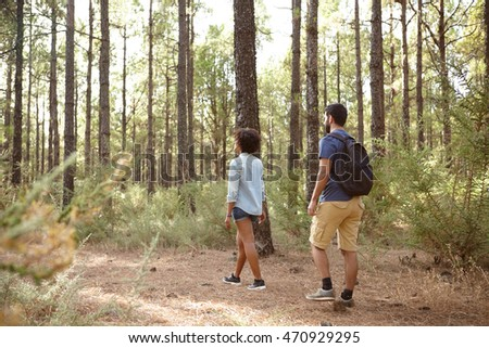 Two friends exploring a pine tree plantation in the late afternoon sunshine, looking ahead while wearing casual clothing