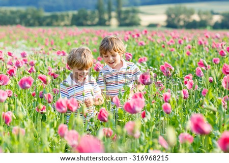 Two funny little blond children, boys friends in blooming poppy field with pink flowers. Smiling boys. Active leisure with kids in summer, on sunny warm day, outdoors. - stock photo