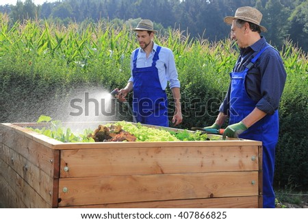 Two gardeners pouring a raised salad bed in garden - stock photo