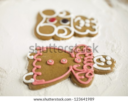 Two gingerbread cookies lying on flour - stock photo