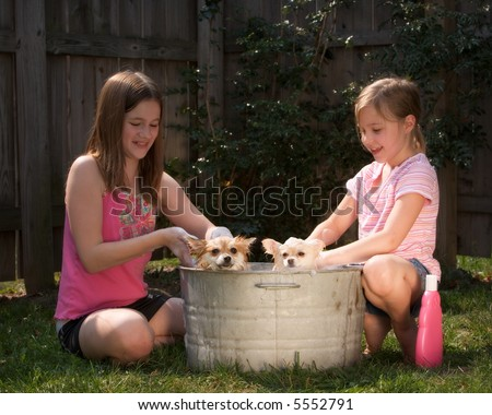 Two girls washing two Pomeranian puppies outside in an old tin tub. - stock photo