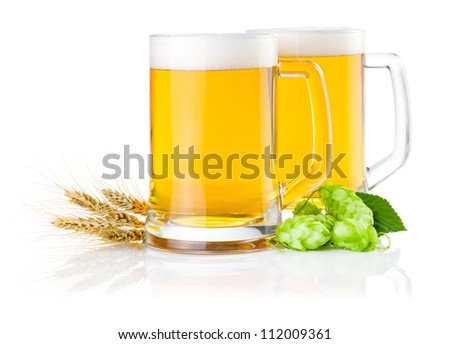 Two glasses of fresh beer with Green hops and ears of barley isolated on a white background - stock photo