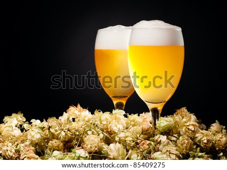Two glasses of raw unfiltered beer with hop over black