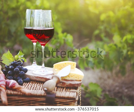 Two glasses of red wine with bread, meat, grape and cheese on the vineyard background - stock photo