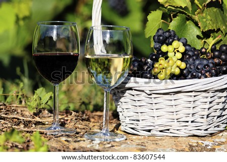 two glasses of wine and grappes in basket - stock photo