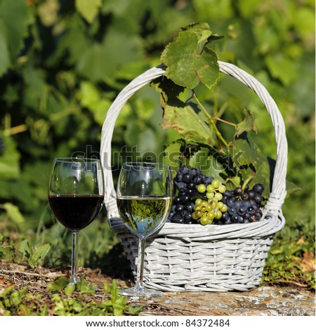 two glasses of wine and grappes in basket in a field - stock photo