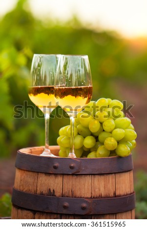 Two glasses white wine and grapes on the background of green grape leaves - stock photo