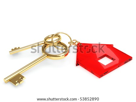 Two gold keys with label symbol home - stock photo