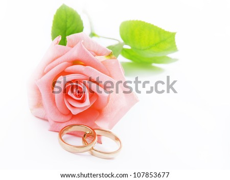 Two gold wedding rings beside a pink rose./Pink Rose & Wedding rings/Pink Rose & Wedding rings