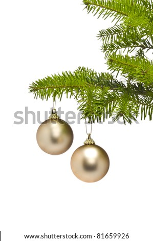 Two golden decoration balls in Christmas tree branch, over white