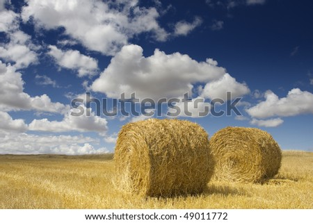 Two golden hay bales in the countryside on a perfect sunny day (autumn season) - stock photo