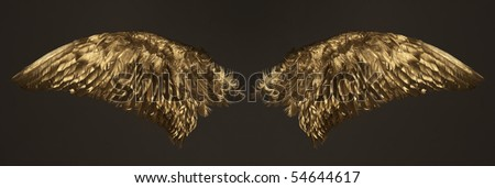 Two golden wings isolated on dark background - stock photo